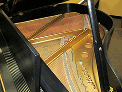 Chickering 4 10 Grand Piano