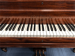 Vintage Chickering Grand Piano